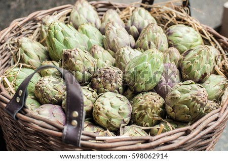 Artichokes harvested