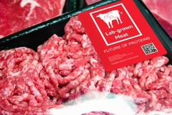 Artificial beef lab grown meat in retail supermarket emerging field of food production with label. Future trend of biotechnology ,  artificial food 4.0 concept.