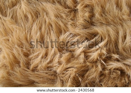 artificial fur textures