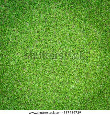 Artificial Grass background - Shutterstock ID 387984739