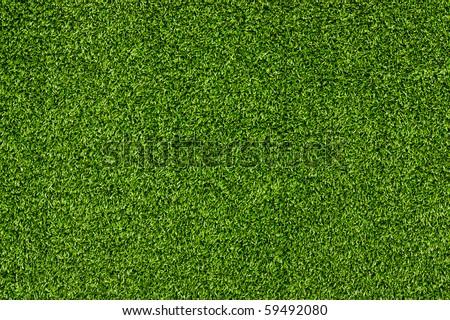 Artificial Grass Field Landscape View