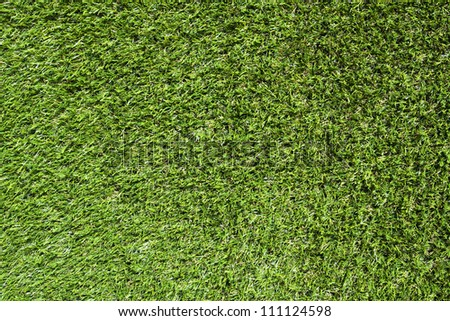 Artificial Grass Field Top View