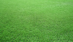 Artificial grass of football field, Green lawn for texture background, Perspective