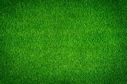 Artificial grass texture as background.