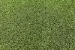 Artificial green grass, football field surface, top view. Empty space, design element.