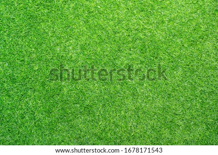 Artificial green Grass for background, Green grass texture. lawn for training football pitch, Grass Golf Courses green lawn pattern textured background.