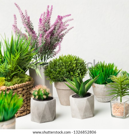 Artificial houseplants in different pots over white wall, crop #1326852806