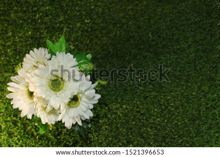 Artificial Plants or Artificial Grass on  Artificial grass for Home and Office Decoration without The Care. #1521396653