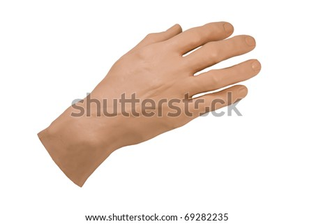 artificial prosthetic hand for medical training isolated over white background