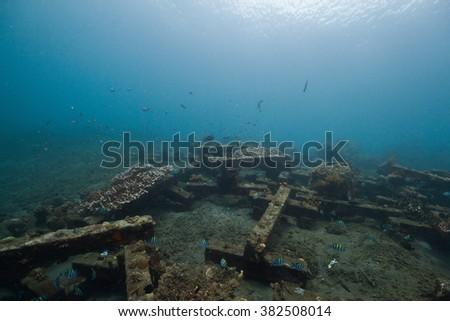 Artificial reef #382508014