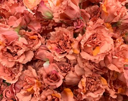 artificial silk carnation flowers, color shade from light pink to orange