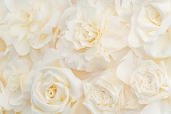 Artificial white rose buds for background and design. White floral background