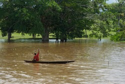Artisanal fishing in the flooded shores of the Amazon River in Loreto-PERU
