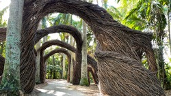 Artistic abstract arches made out of twigs in a tropical botanical garden in Vero Beach, Florida.