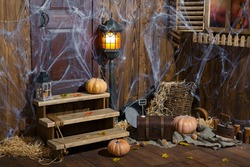 Artistic composition Halloween. Pumpkin, cobwebs, studio photography