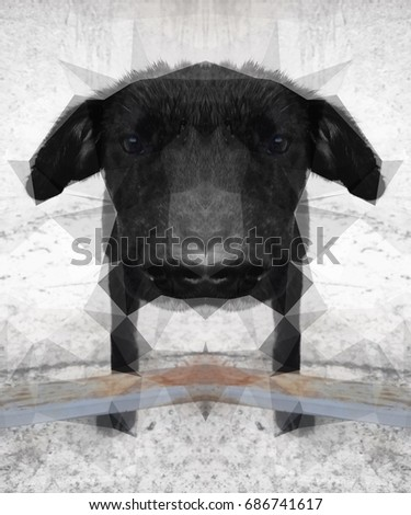 Artistic image of a Dog, Mirrored Low poly #686741617