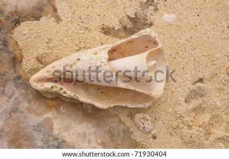 how to get foothold broken shore