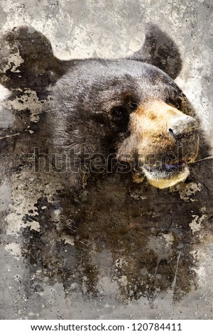 Artistic portrait with textured background, black bear head