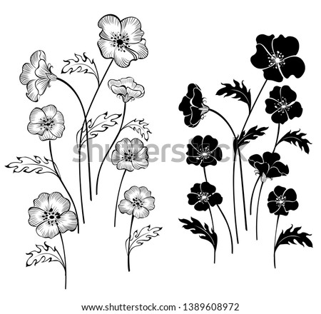 artistically painted delicate flowers on a white background.