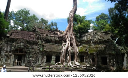Arts of Taprohm #1255952326