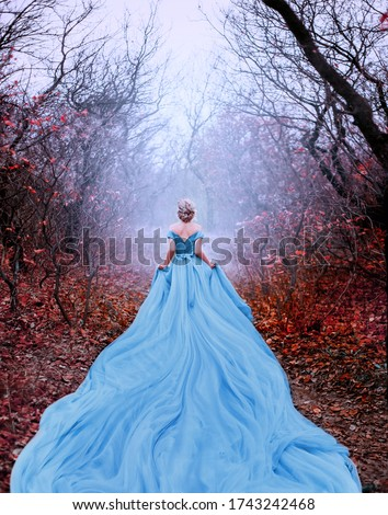 Artwork photo Beautiful silhouette woman princess Cinderella in autumn nature fog mystic forest tree. Luxury magnificent royal blue dress very long train. image glamorous goddess back fairy tale Queen Foto stock ©
