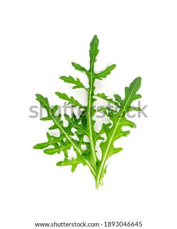 Arugula isolated. Fresh arugula, ruccola leaves, rucola, eruca or garden roquette salad top view ストックフォト ©