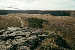 Asbyrgi canyon in North Iceland near Dettifoss, green nature, some trees, nobody is here