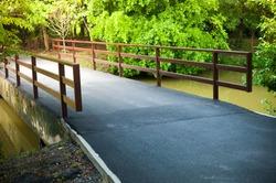 Asfalt road bridge pathway to the forrest