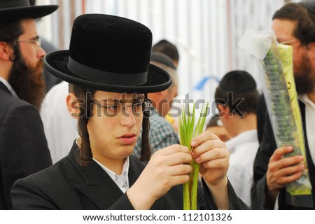 ASHDOD - OCTOBER 12 : Jewish ultra-orthodox TENNAGER inspect Lulav at a four species market for the Jewish holiday of Sukkot on October 12 2011 in Ashdod,Israel.