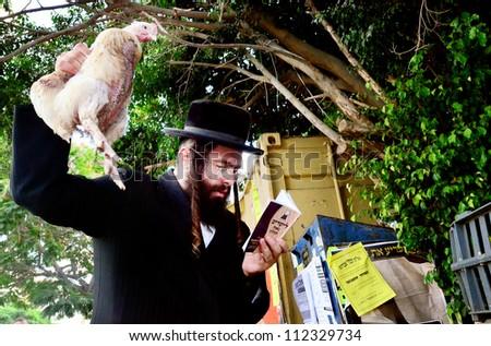 "ASHDOD - SEPTEMBER 15 : Ultra orthodox Jewish man waves a chicken over himself during the ""Kaparot"" ceremony held on September 15 2010 in Ashdod Israel."