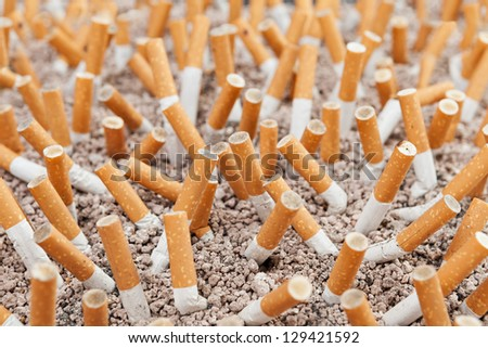Ashtray closeup full of smoked cigarettes in the sand