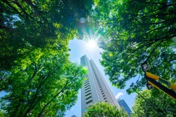 Asia Business concept for real estate, corporate construction and ecology - looking up view of panoramic modern city skyline with blue sky and green tree in shinjuku, tokyo, japan