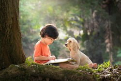Asian boy and dog. Kid read book. Child and puppy under tree. American Cocker Spaniel home pet. Domestic animal. School and education. Nature and park. Early learning. Summer outdoor. Best friends.