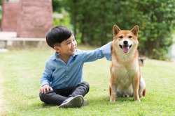 Asian boy are training for Shiba Inu dogs in the garden. An Asian boy plays with a Shiba Inu dog who has a picnic in the garden.
