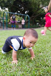 asian boy crawling on green grass gound in the park