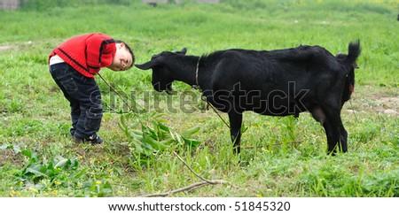 asian boy looking black goat