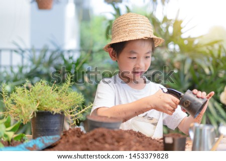 asian child carrying a bag of potting seedlings to be planted into the soil.Little boy gardening and planting vegetable plants and flowers in garden.Environment concept
