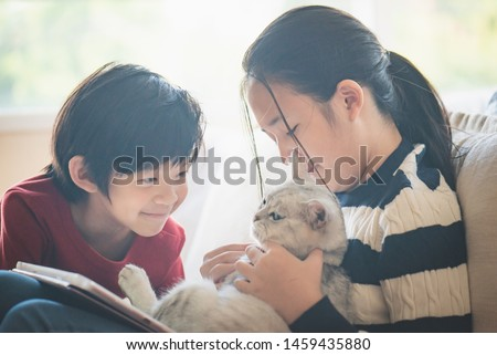 Asian children playing with british shorthair cat on the bed