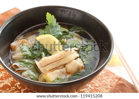 Asian cuisine, chicken Pho ka - stock photo