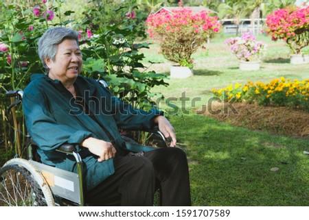 asian elder woman in wheelchair resting in garden. elderly female relaxing in park. senior leisure lifestyle