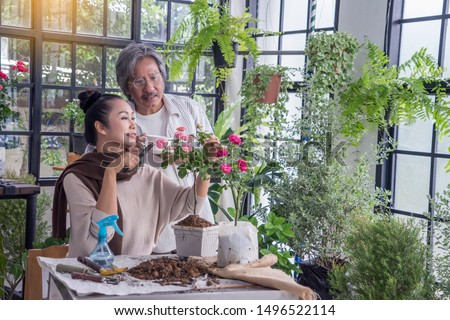 Asian elderly couple grow roses, add soil, fertilize and Pruning roses in pots to prepare watering in green house .lifestyle and hobby  concept #1496522114