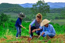 Asian family planting tree in farm near mountain