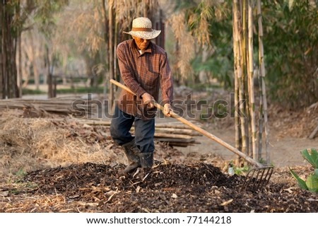 asian farmer raking soil and dry leaves to make organic compost, Thailand