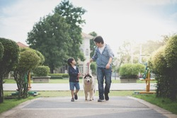 Asian father and son walking with a siberian husky dog in the park