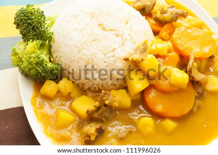Asian food, rice and curry beef - stock photo