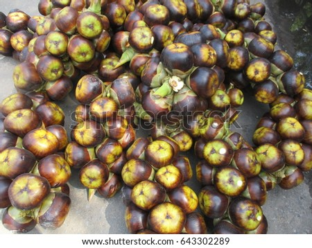 Asian Fruit-Palm