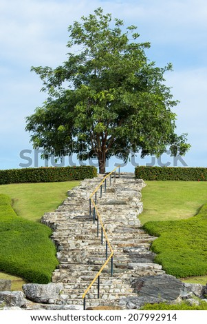 Asian Garden Stone staircase with wood railing