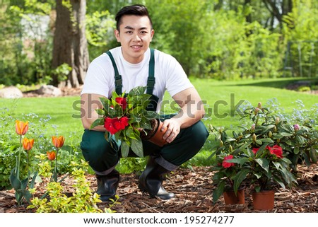 Asian gardener planting flowers in a garden #195274277