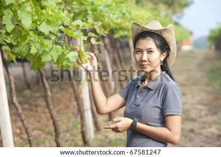 Asian Girl with grapes in the vineyards of Thailand