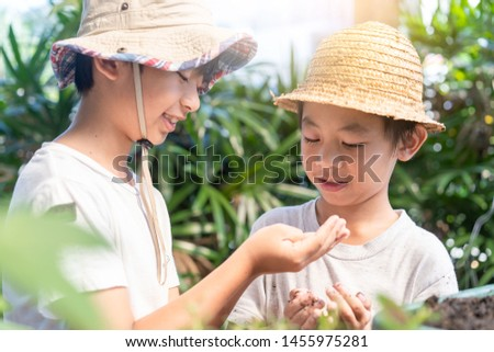 asian kid carrying a bag of potting seedlings to be planted into the soil.Little boy gardening and planting vegetable plants and flowers in garden.Environment concept